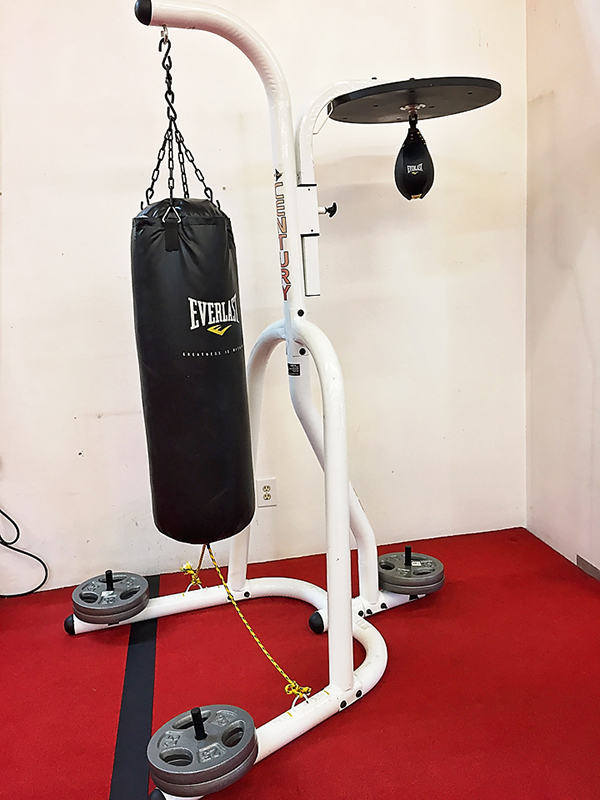 IMG 3553 heavy speed bag FB